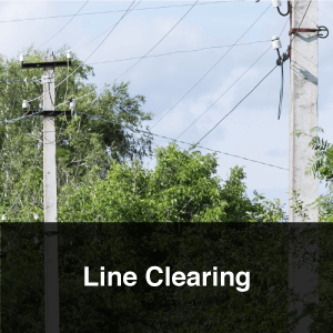 Line Clearing